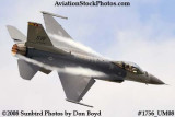 USAF F-16 East Coast Demo at the Great Tennessee Air Show at Smyrna aviation stock photo #1756