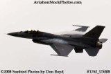 USAF F-16 East Coast Demo at the Great Tennessee Air Show at Smyrna aviation stock photo #1762