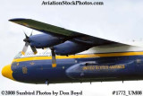 USMC Blue Angels Fat Albert C-130T #164763 at the Great Tennessee Air Show at Smyrna aviation stock photo #1772