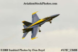 One of the Blue Angels at the 2008 Great Tennessee Air Show at Smyrna aviation stock photo #1787