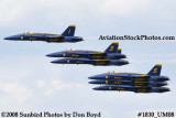 The Blue Angels at the 2008 Great Tennessee Air Show at Smyrna aviation stock photo #1830