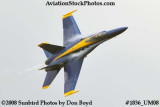 One of the Blue Angels at the 2008 Great Tennessee Air Show at Smyrna aviation stock photo #1836