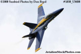 One of the Blue Angels at the 2008 Great Tennessee Air Show at Smyrna aviation stock photo #1838