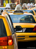 NYC Line of Taxis