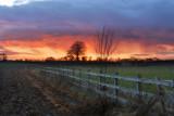 Skidby sunset 2.JPG