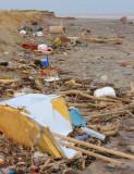 beach rubbish, Easington I