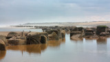 Easington IMG_0663.JPG