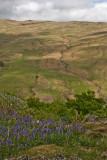 Kirkstone Pass 023.jpg