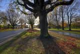 East Park autumn001.jpg