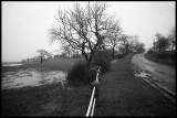 Danby Wiske - Danby Lane
