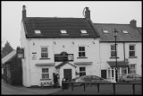The White Swan - Danby Wiske