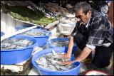 Fish Market - Galata Bridge