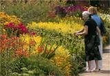 Cliveden flower borders