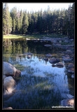 Yosemite13.jpg