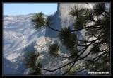 Yosemite37.jpg