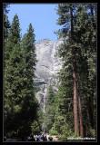 Yosemite53.jpg