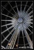 Wheel09.jpg
