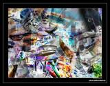 20080304_164146.jpg