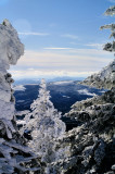 Some Picture I made on White Top Mountain VA Jan-2- 2010