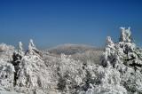 Mt Roger VA. From White Top Mountain VA.