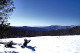 Along trail to Top of Stone Mt. NC .Picture made 1/31/10
