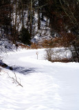 Made on the Blue Ridge Parkway to day (2/15/10)