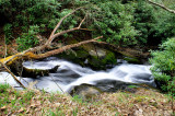 Anther waterfalls I Found On Big Sandy Creek(4/8/10) About 20 to 30 Ft.