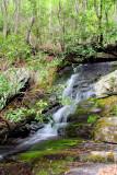 Waterfalls & cascades On Harris Creek NC