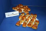 22-04-09 MB0 Nederlandeers kampioenendag 151.JPG