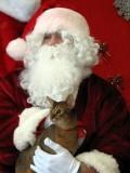 Finn meets Santa in 2009