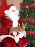 Hmmm... maybe Santa is all that bad