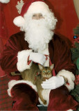 Yep, I'm liking this big fat man in the red suit!!!