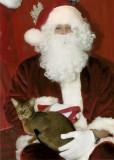 Santa is cuddly!!