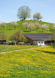 Bauernhof (103812)