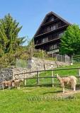 Bauernhof (81054)