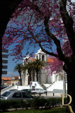 PALMELA - Igreja de São Pedro