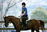 MCLA Equestrian Club