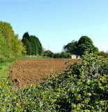 THE FIELD'S BEEN PLOUGHED