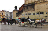 HORSE CARRIAGES BY THE CLOTH HALL