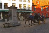 HORSE CARRIAGE & FOUNTAIN