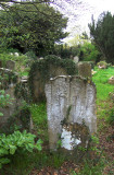 OLD TOMBSTONE . 1