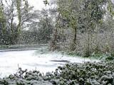 APRIL SNOW O8 GALLERY