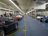 The Auto Collections showroom in Las Vegas