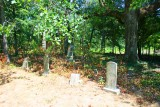 Old Family Cemetery 2