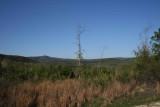Pine Log WMA Land