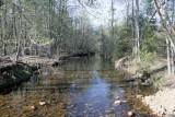 Stamp Creek 2