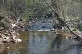 Stamp Creek