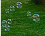 Dark Bubbles