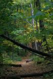 Appalachian Trail & Warwick Valley, NY