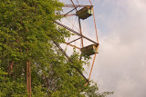 Ferris Wheel 2009